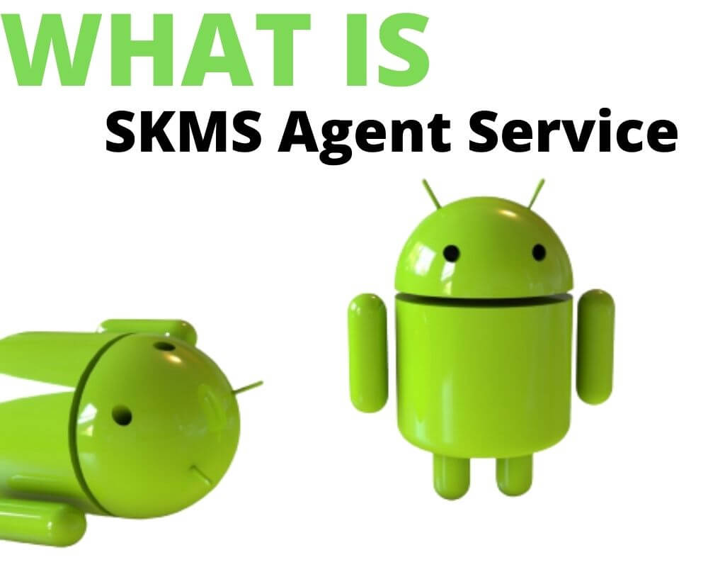 What is SKMSAgentService Android App
